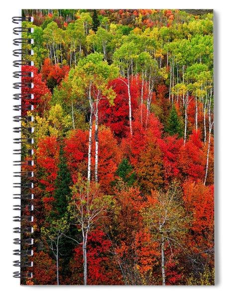 Idaho Autumn Spiral Notebook