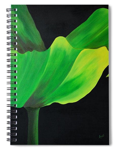 If Shades Could Speak Spiral Notebook
