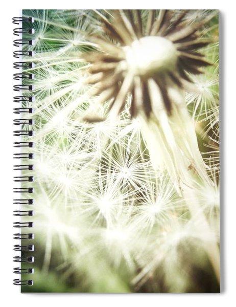 Illuminated Wishes Spiral Notebook