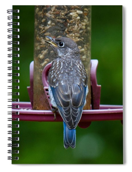 Spiral Notebook featuring the photograph I'm Just Cute by Robert L Jackson