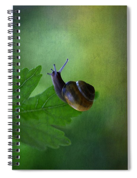 I'm Not So Fast Spiral Notebook