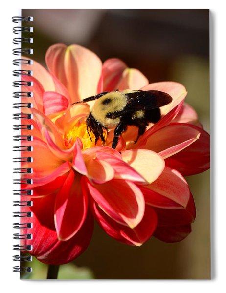 I'm On The New Pollen Diet Spiral Notebook
