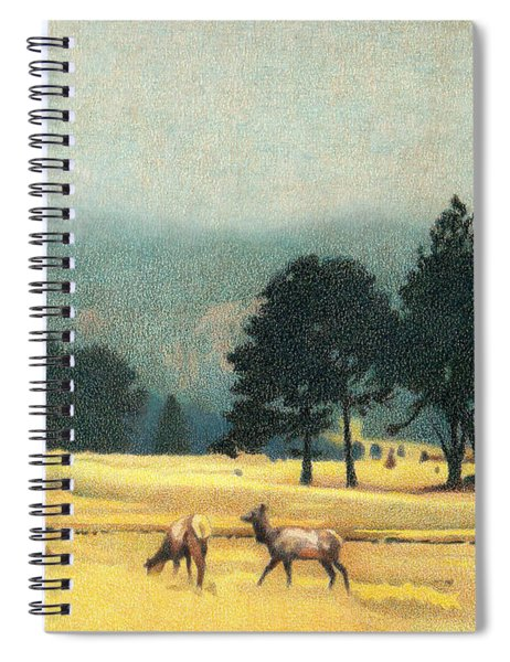Impression Evergreen Colorado Spiral Notebook