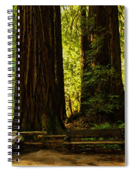 Impressions Of Muir Woods California Spiral Notebook