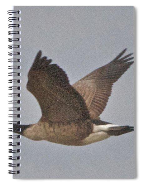 In Flight Spiral Notebook