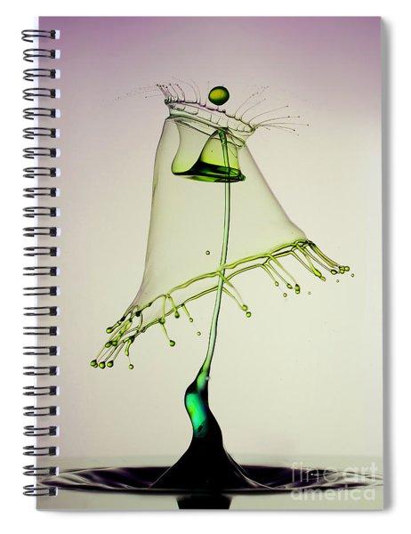 In Green Spiral Notebook
