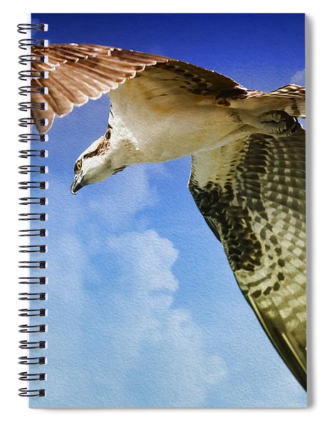 In Search Of Spiral Notebook