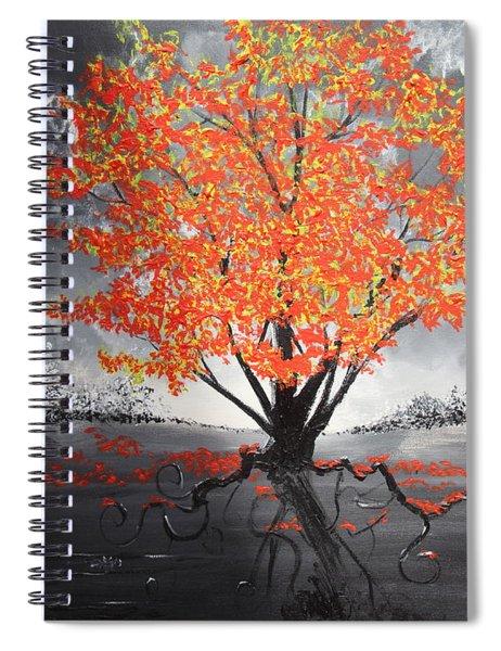 Blaze In The Twilight Spiral Notebook