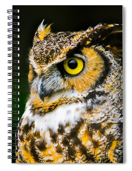In The Eyes Spiral Notebook
