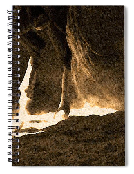 In The Practice Ring Spiral Notebook