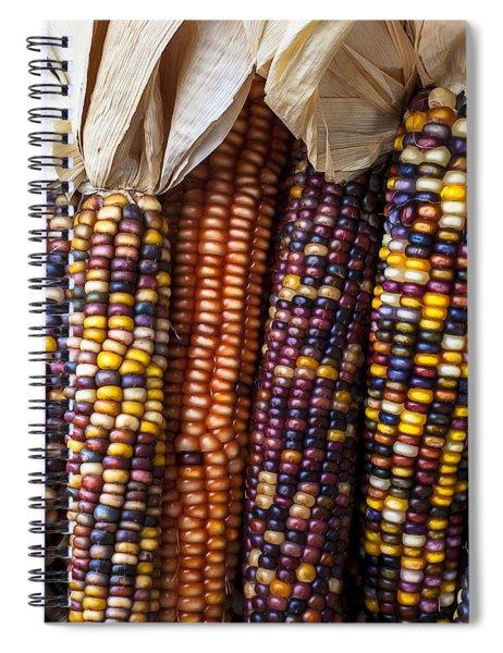 Indian Corn Close Up Spiral Notebook
