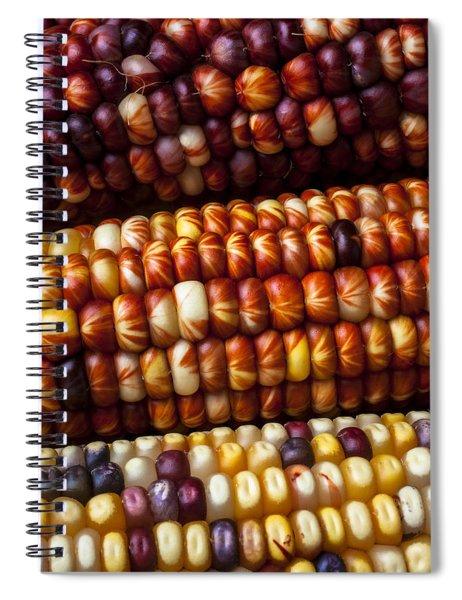 Indian Corn Harvest Time Spiral Notebook