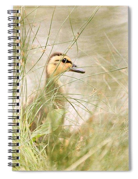 Innocent Duckling Spiral Notebook