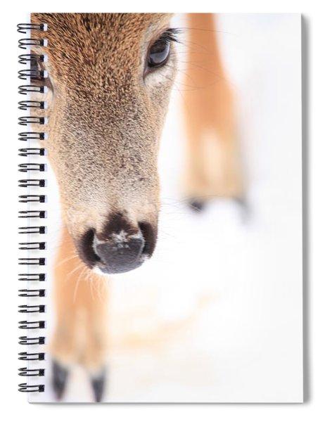 Innocent Eyes Spiral Notebook