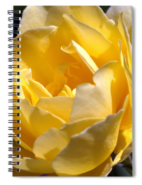 Inside The Yellow Rose Spiral Notebook