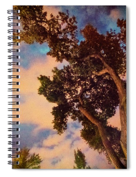 Inspired By Maxfield Parrish Spiral Notebook