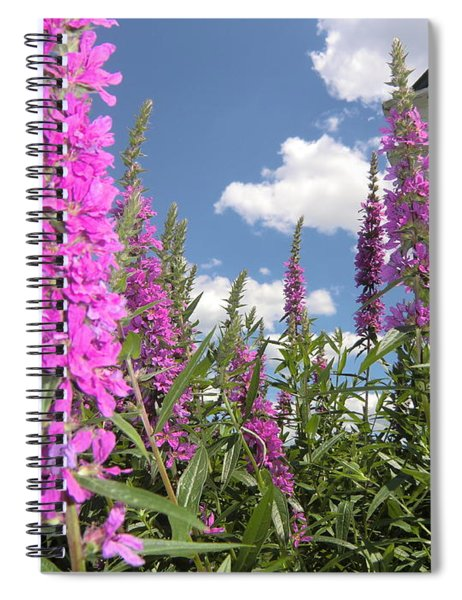 Inspiring Peace - Signed Spiral Notebook