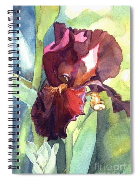 Watercolor Of A Tall Bearded Iris Called Sultan's Palace In Red And Burgundy Spiral Notebook