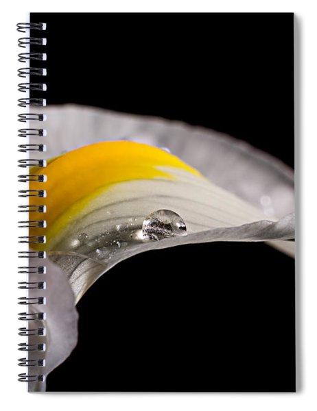 Iris With Water Spiral Notebook
