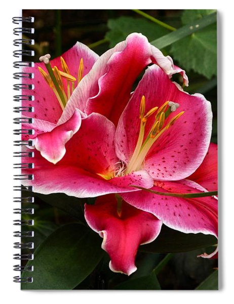 Irresistible Spiral Notebook