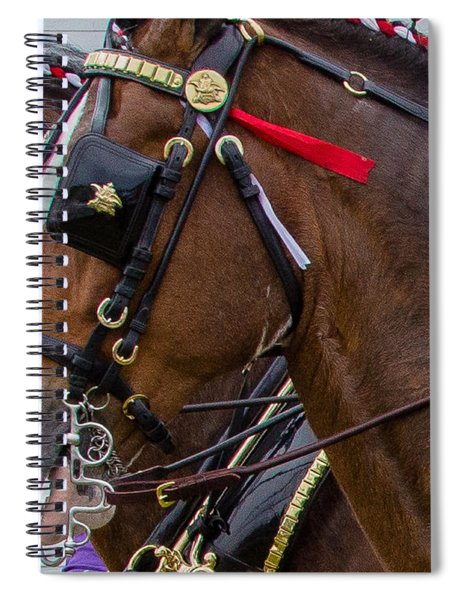 Spiral Notebook featuring the photograph It's Pretty Horse Day by Robert L Jackson