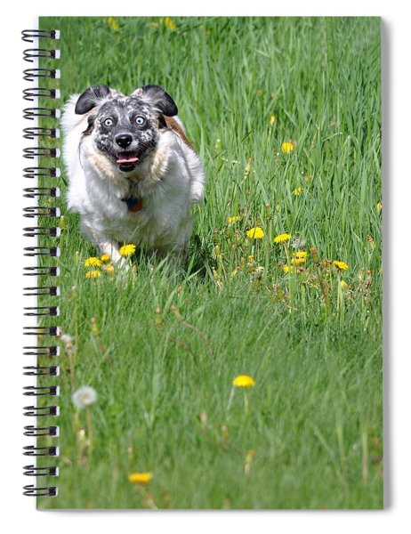 It's Spring - It's Spring Spiral Notebook