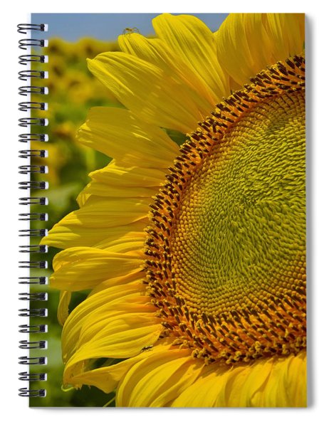 Spiral Notebook featuring the photograph Itsy Bitsy by Skip Hunt