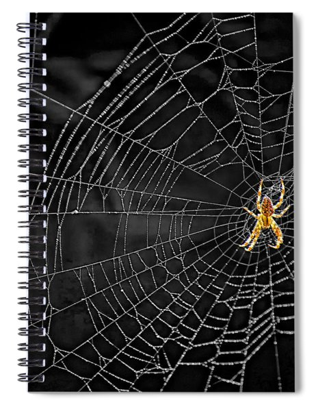 Itsy Bitsy Spider My Ass 3 Spiral Notebook