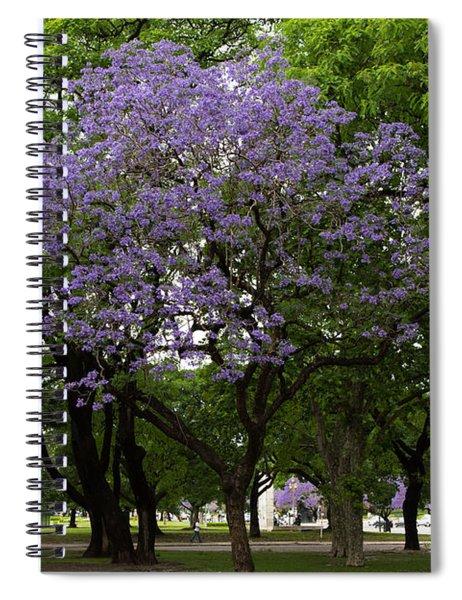 Jacaranda In The Park Spiral Notebook