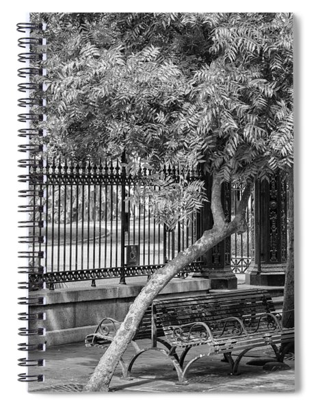 Jackson Square Bench And Tree Spiral Notebook
