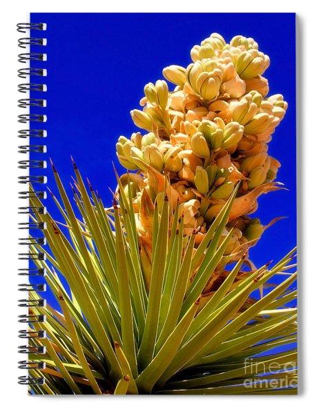Joshua Bloom By Diana Sainz Spiral Notebook
