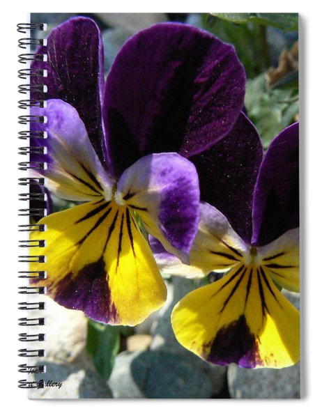 Jump Up And Kiss Me Spiral Notebook