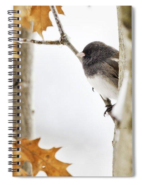 Junco And Oak Spiral Notebook