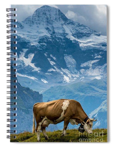 Jungfrau Cow - Grindelwald - Switzerland Spiral Notebook