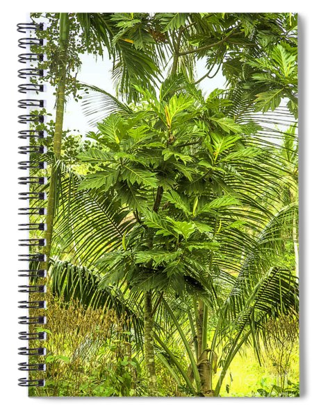 Jungle And Rice Field Spiral Notebook