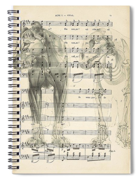Jungle Music Spiral Notebook