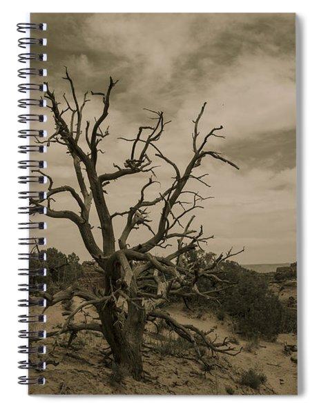 Juniper Tree Utah Spiral Notebook