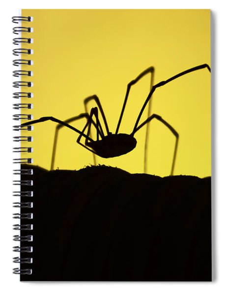 Just Creepy Spiral Notebook
