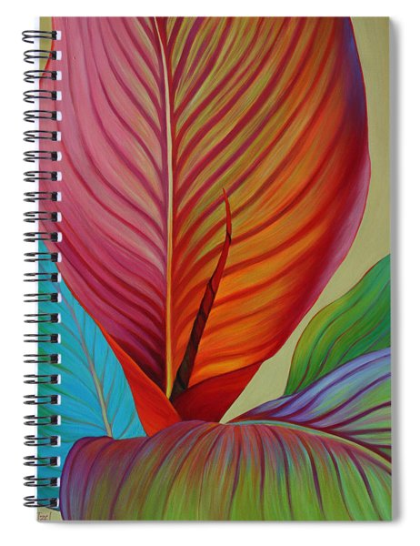 Kaleidoscope Spiral Notebook