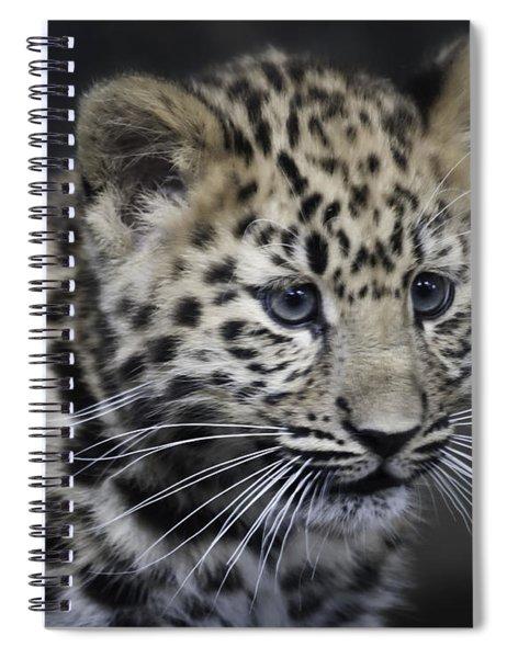 Kanika - Amur Leopard Portrait Spiral Notebook