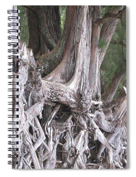 Kauai - Roots Spiral Notebook