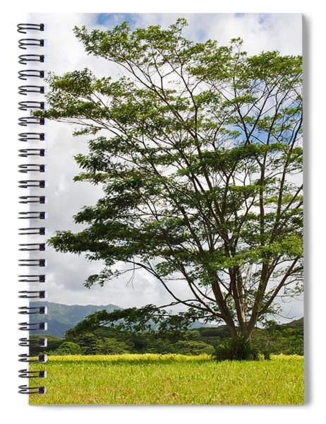 Kauai Umbrella Tree Spiral Notebook