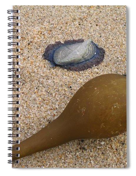 Kelp Float And Velella Spiral Notebook