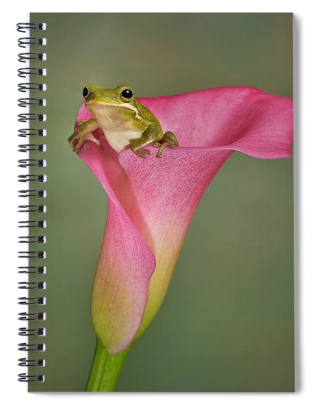 Kermit Peeking Out Spiral Notebook