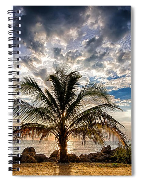 Spiral Notebook featuring the photograph Key West Florida Lone Palm Tree  by Robert Bellomy