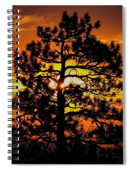 Keystone Pine Spiral Notebook