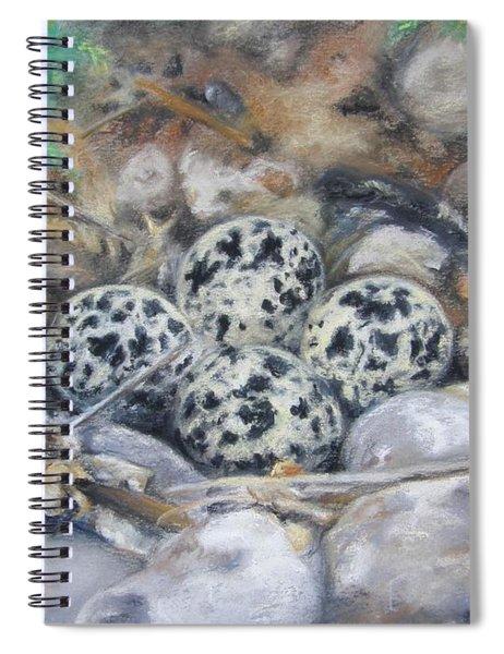 Killdeer Nest Spiral Notebook