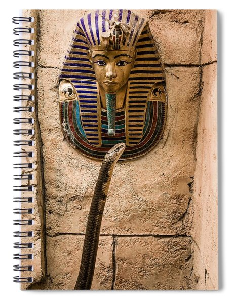 King And King Spiral Notebook