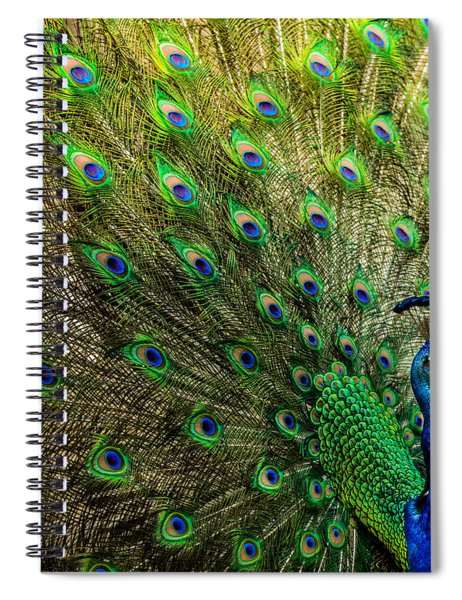 King Of Birds Spiral Notebook