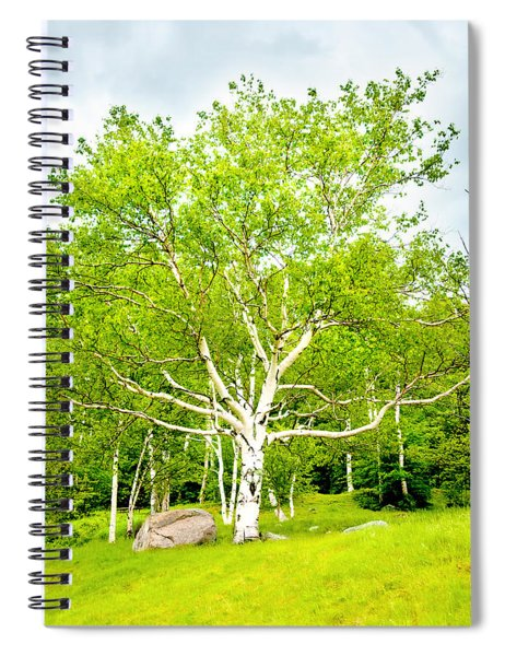 King Of The Birch Spiral Notebook